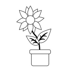 Sunflower in pot cartoon in black and white vector