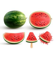 Watermelon realistic set vector