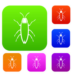 cockroach set collection vector image