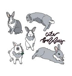 cute grey bunny vector image