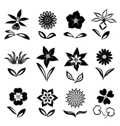 Flower icon set Black cutout silhouettes on white vector image