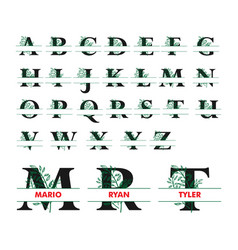 monogram split letter alphabet with floral vector image