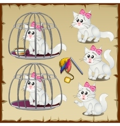 Set of fluffy white cats trapped in a steel cage vector