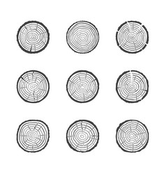 tree growth rings icons set saw cut trunk vector image
