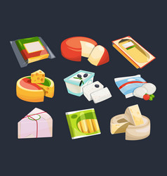 different packaging of cheeses vector image vector image