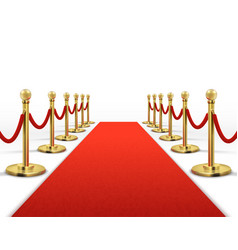 red carpet for celebrity with gold rope barrier vector image