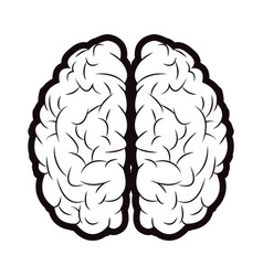 brain mind idea creativity memory outline vector image