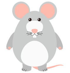 gray mouse on white background vector image