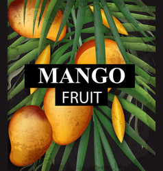 mango card background growing fruits ripe harvest vector image