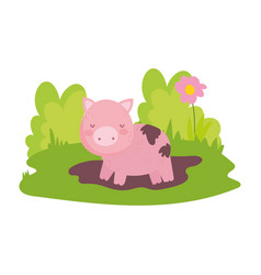 Pig in mud flower grass farm animal isolated icon vector