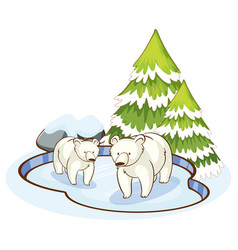 scene with two polar bears on ice vector image