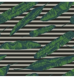 seamless pattern with banana palm leaves hand vector image