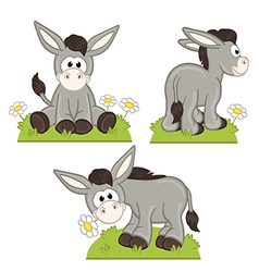 Set of isolated donkey in meadow vector