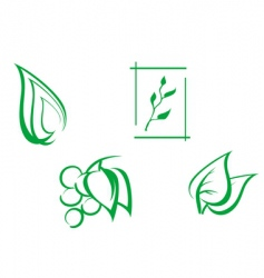 set of leaves symbols vector image
