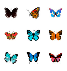 set of moth realistic symbols with painted lady vector image