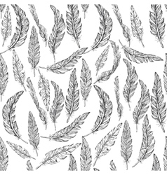 feathers seamless pattern vector image