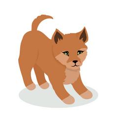 dingo cartoon flat vector image vector image