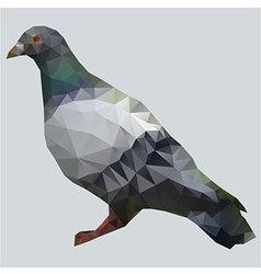 pigeon polygon vector image vector image