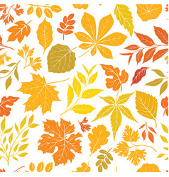 autumn leaves stylish background fall seamless vector image