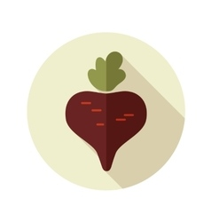 Beet flat icon with long shadow vector image