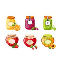 fruit and berries jam jar glasses set strawberry vector image