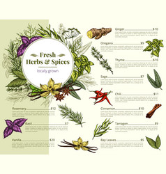 Menu price for spices and herbs shop vector