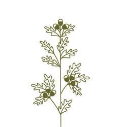 Oak branch hand drawing oak branch icon vector
