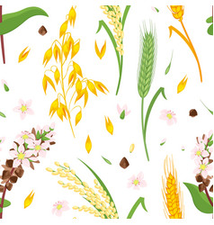 Seamless pattern with cereals vector