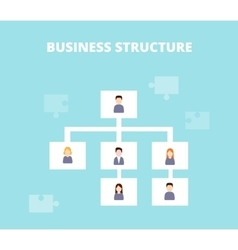 Business structure and hierarchy of company vector
