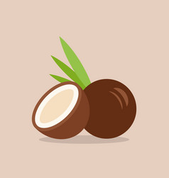 coconut icon in flat style vector image