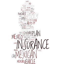 Mexican car insurance the best way to buy it text vector