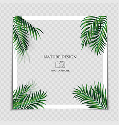Natural background photo frame template with palm vector