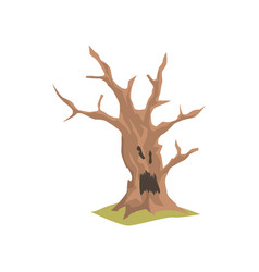 old dry tree with scary face natural element for vector image