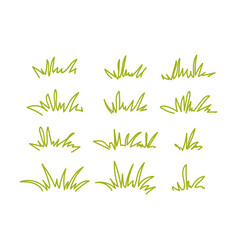 Set of green grass tufts transparent background vector