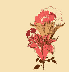 Blooming lily flowers vintage bouquet for retro vector