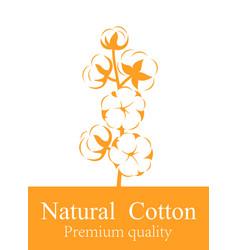 Cotton plant vector