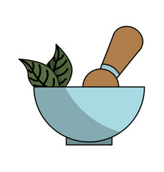 Grinder spa product icon vector