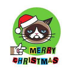 Grumpy cat in christmas hat merry christmas vector