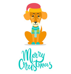 Merry christmas greeting card dog knitted sweater vector