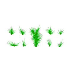 set of green grass green grass white background vector image