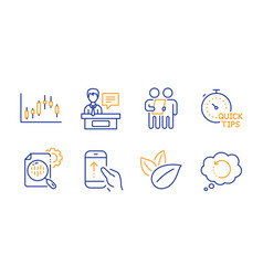 Survey organic product and seo stats icons set vector