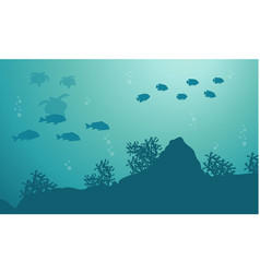 silhouette of fish and turtle ocean landscape vector image