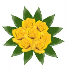 bunch of yellow roses vector image