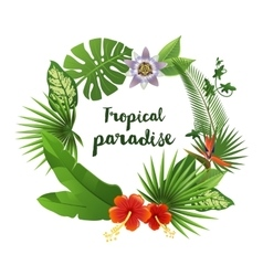 Wreath made of tropical leaves and flowers vector image vector image
