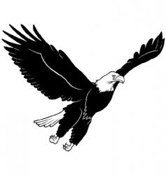 Eagle flying vector