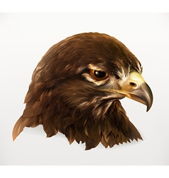Eagle head realistic vector