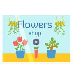 flat design flowers shop facade icon store modern vector image