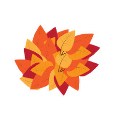 group of autumn leaves vector image