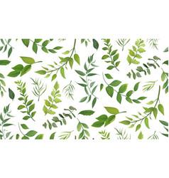 seamless pattern eucalyptus leaves greenery vector image