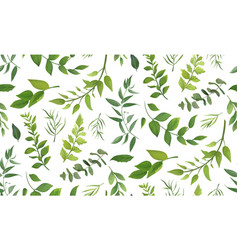 Seamless pattern of eucalyptus leaves greenery vector